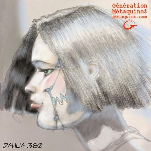 Dahlia-362