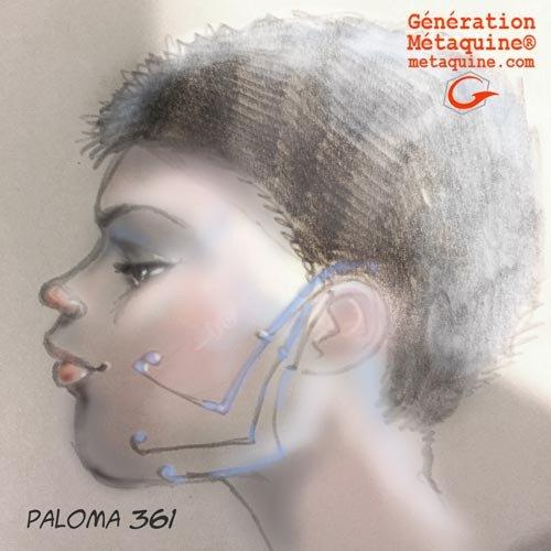 Paloma-361